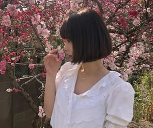 asian, cherry blossom, and girl image