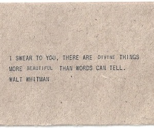 quote, words, and walt whitman image