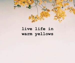 quotes, yellow, and flowers image