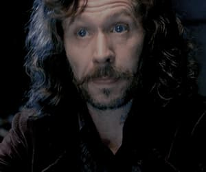 gif, harry potter, and sirius black image