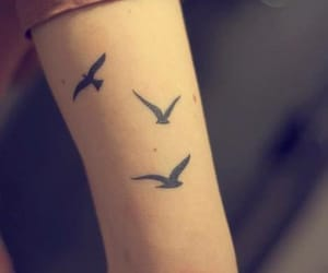 tattoo, bird, and arm image