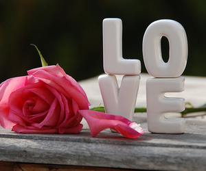 love and rose image