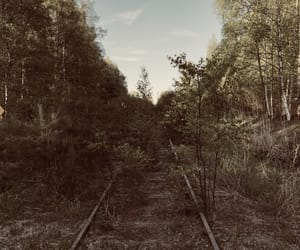 abandoned, finland, and summer image