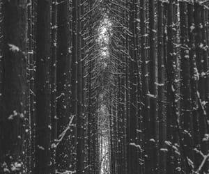 aesthetic, black white, and bw image