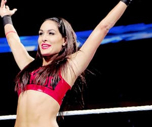 brie bella and wwe image