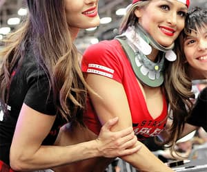 wwe, brie bella, and bella twins image