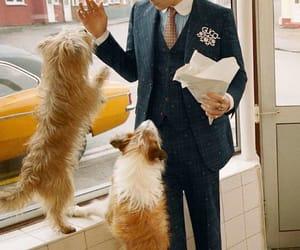 boy, dog, and gucci image
