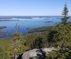 finland, forest, and lake image