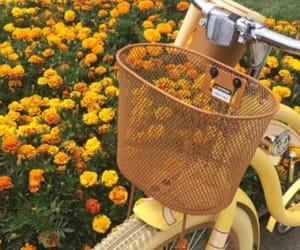 yellow and bike image