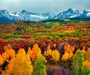 autumn, colourful, and mountain image