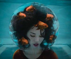 fantasy and fish image