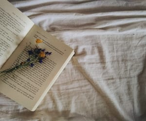 book, bookworm, and old image