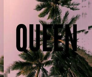 wallpaper, Queen, and pink image