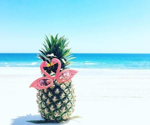 beach, pineapple, and flamingo image