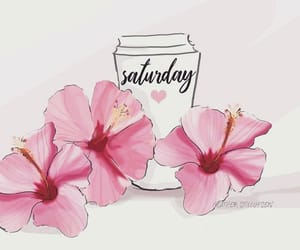 flowers, pink, and saturday image