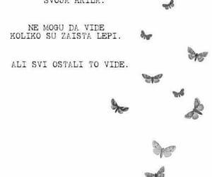 balkan, quotes, and sayings image