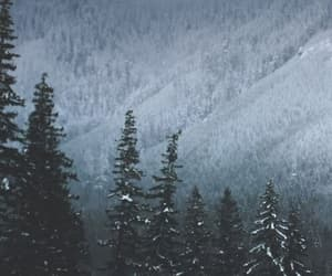 snow, winter, and ❄ image
