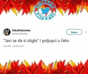 balkan, twitter, and poljupci image