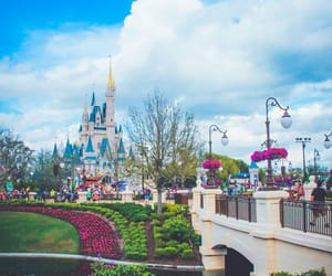 disneyland and magic kingdom image