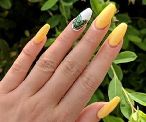 acrylics, nail art, and nails image