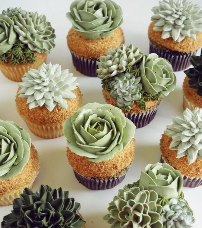 cupcakes, succulents, and art image