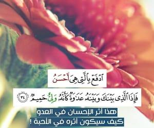 قرآن, آيات, and ولي حميم image