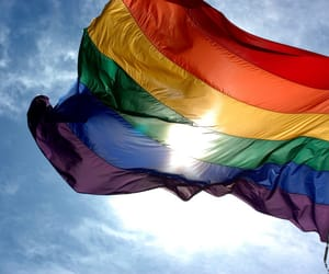 :), homosexuality, and pride image