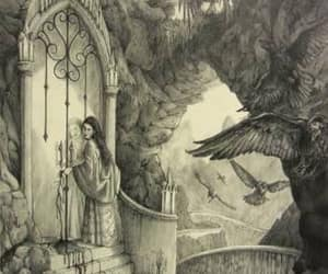 fairy tale and the seven ravens image