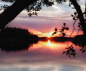 finland, morning, and nature image