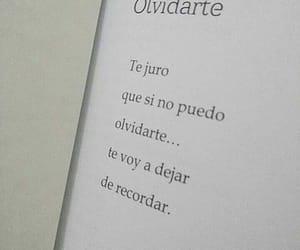 amor, texto, and frases en español image