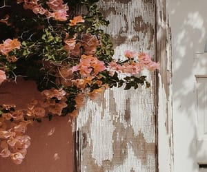 flowers, header, and layout image