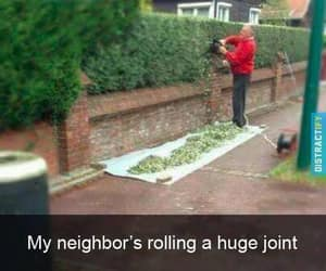 funny, joint, and weed image