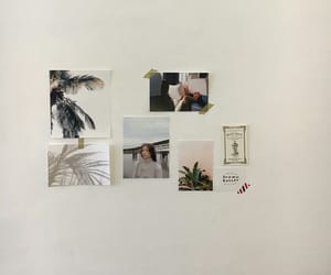 aesthetic, white, and minimal image