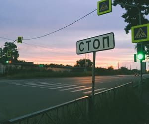 розовый, лето, and закат image