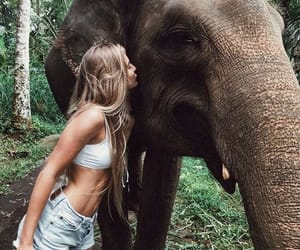 girl, elephant, and animal image