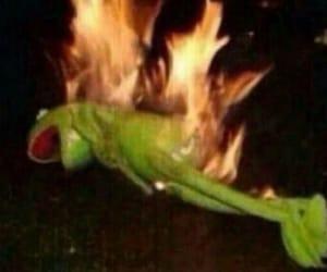 meme, fire, and kermit image