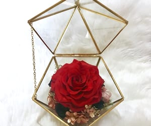 flower, gift, and gold image