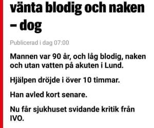dog, sverige, and vården image