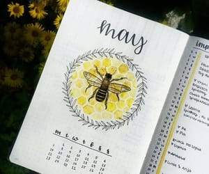 bee, drawings, and planner image