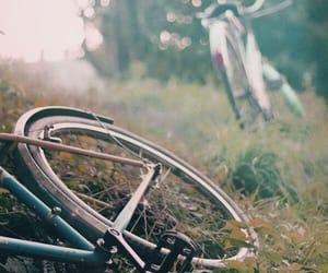 bike, nature, and bicycle image