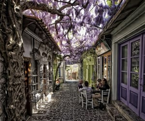 alley, street, and wisteria image