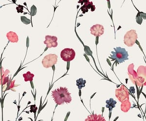 background, pattern, and floral print image