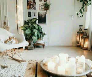 home, lights, and plants image