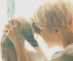 angel, bts, and cat image