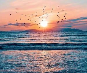 beach, light, and sky image
