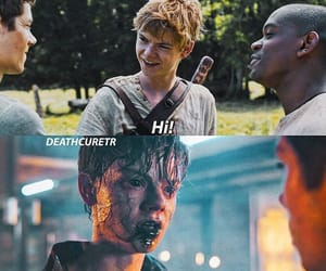 thomas sangster and maze runner image