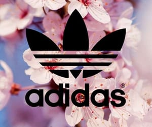 adidas, background, and fondos image