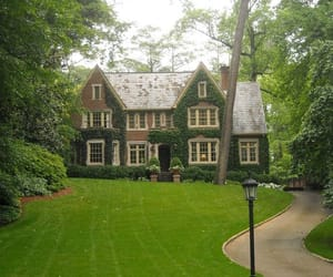 house, garden, and green image