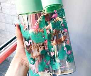 flamingos and cute bottles image