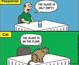 cartoon, lolcats, and funny cats image